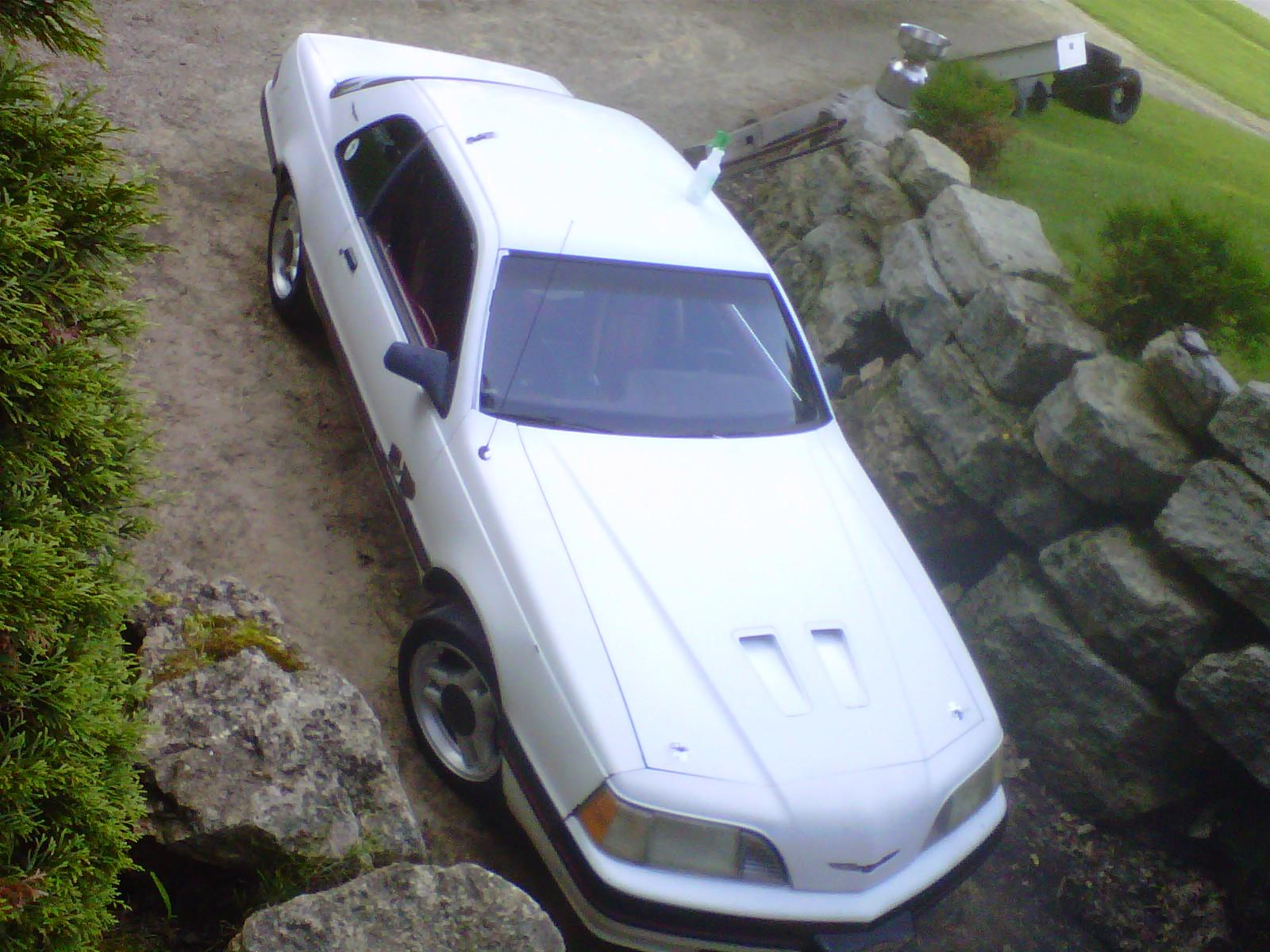 Another FBGM_1991 1988 Ford Thunderbird post... - 15049286