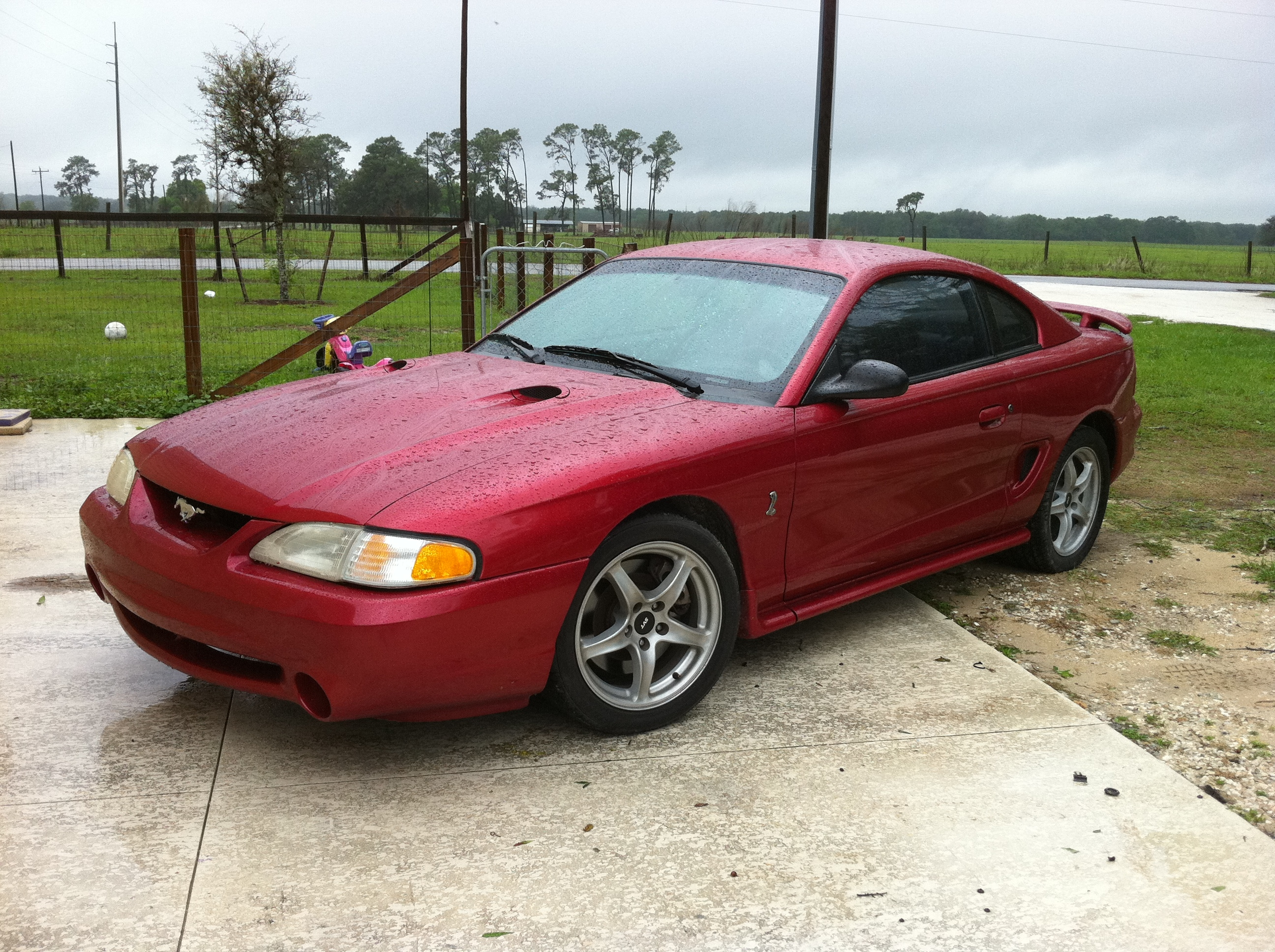 Another 98cobra46 1998 Ford Mustang post... - 15068594