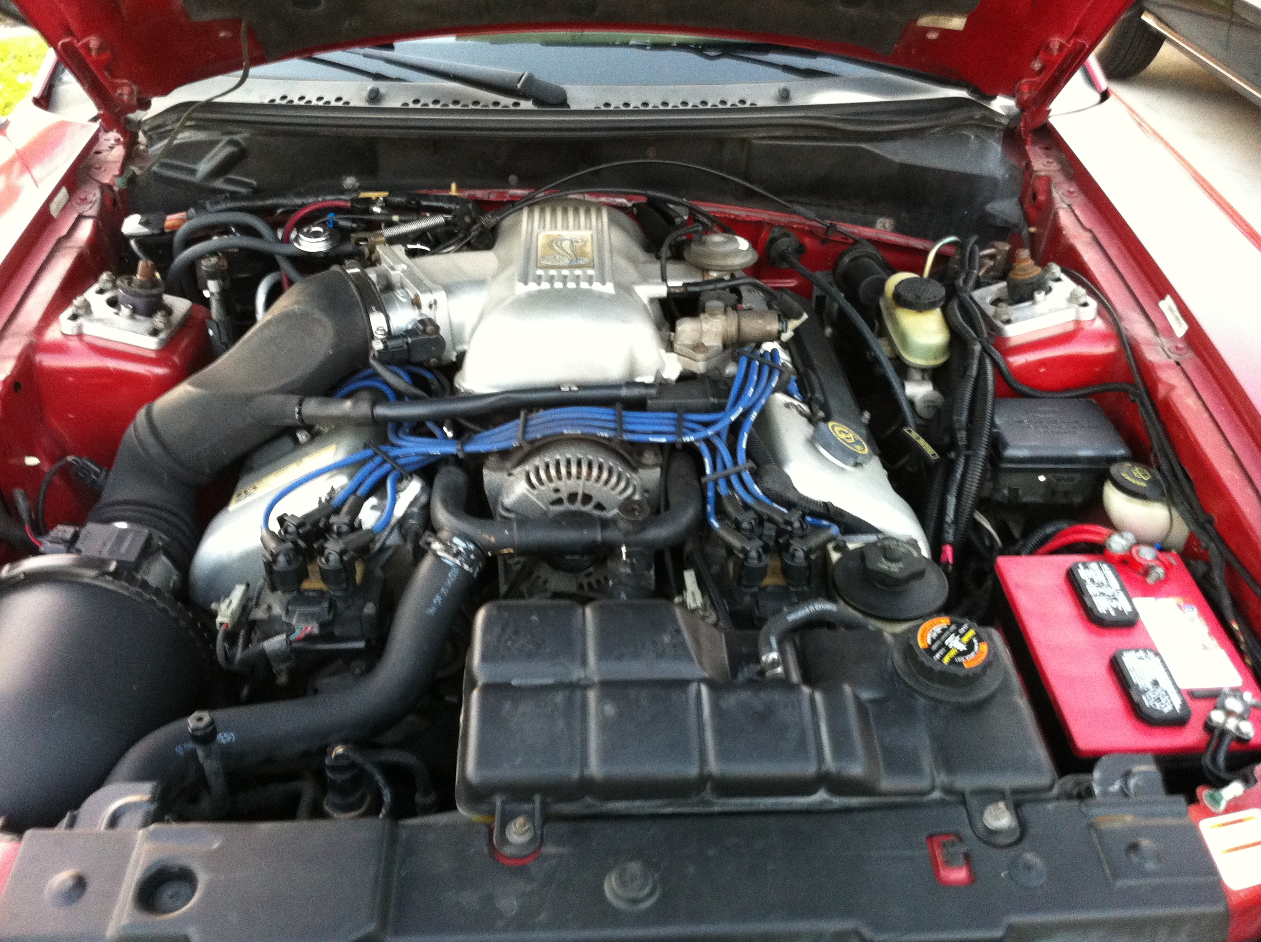 Another 98cobra46 1998 Ford Mustang post... - 15068595