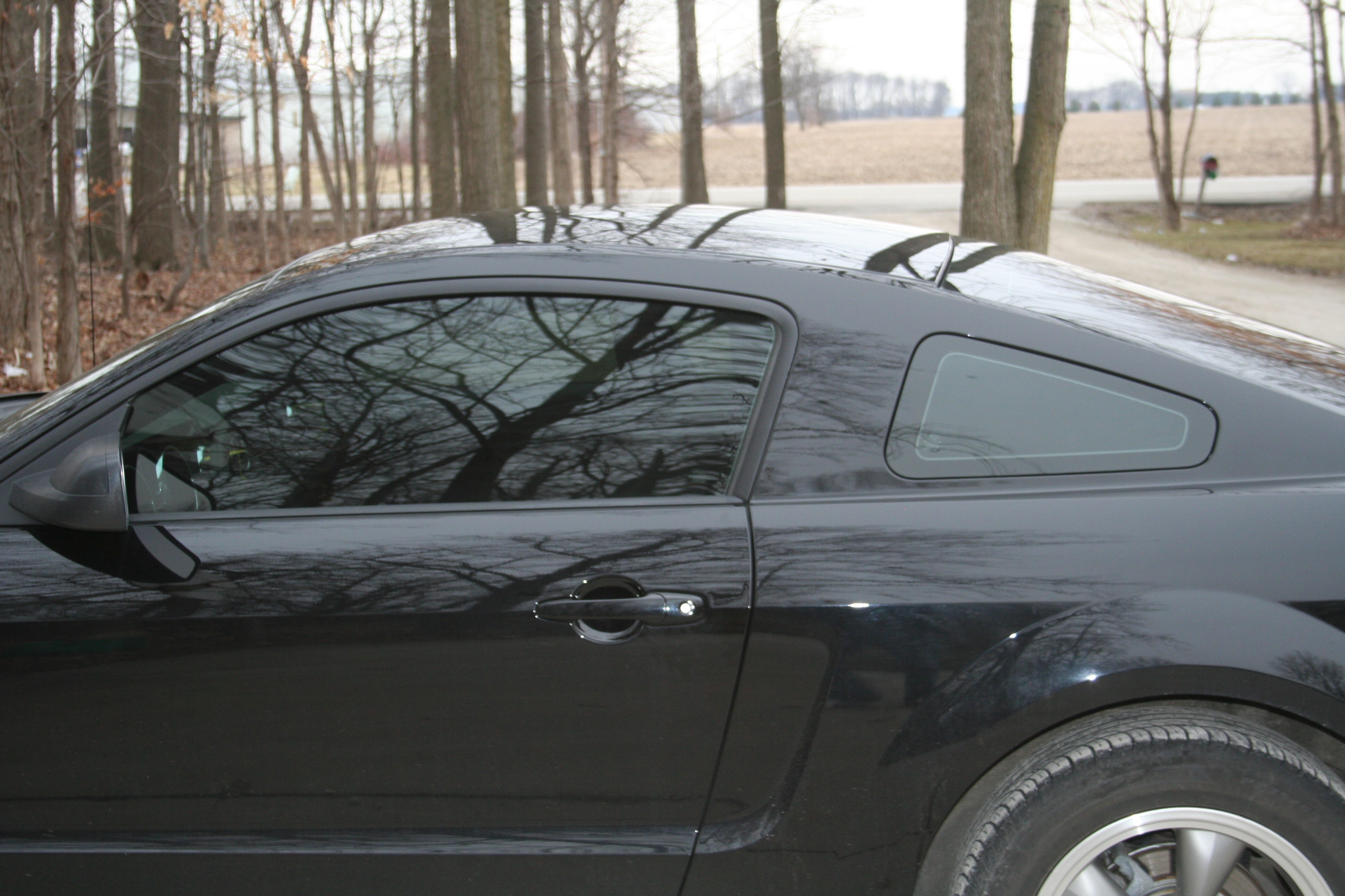 Another BlackedOutStang5 2005 Ford Mustang post... - 15086348