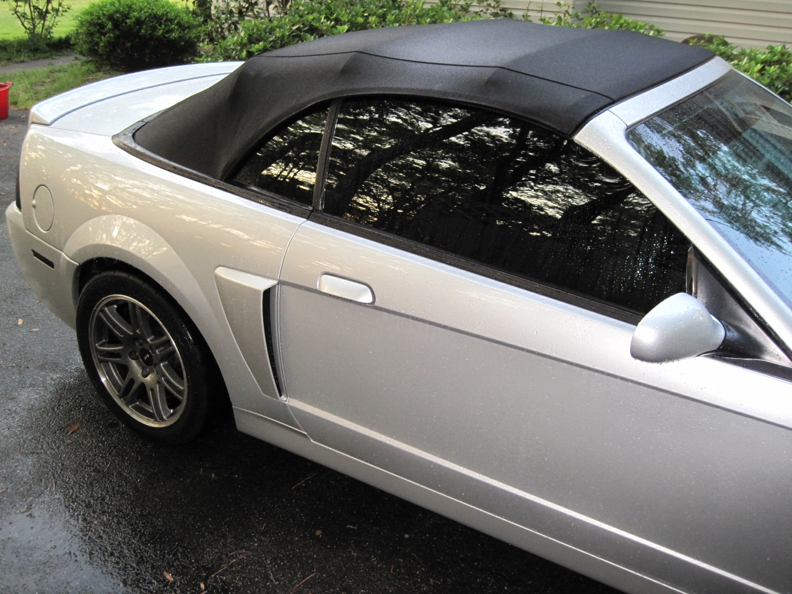 Another mike08gt 2003 Ford Mustang post... - 15090422