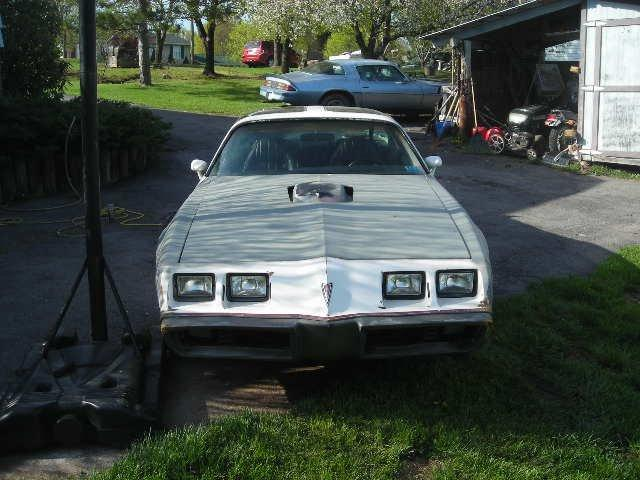 Another xBlazinPyrox 1979 Pontiac Firebird post... - 15102471