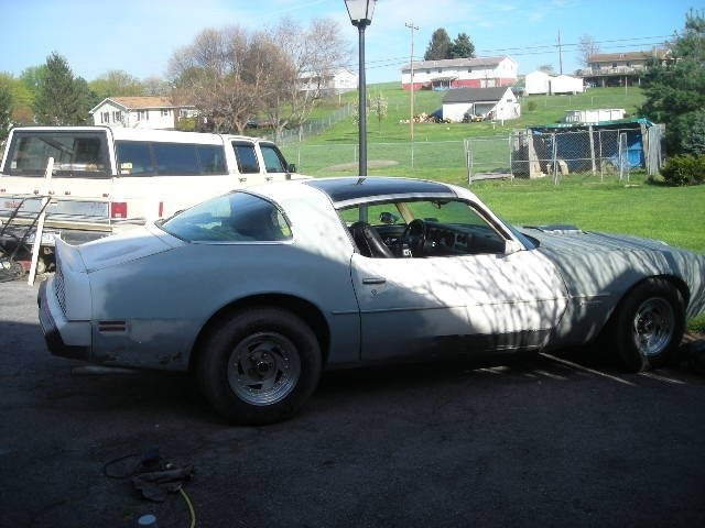 Another xBlazinPyrox 1979 Pontiac Firebird post... - 15102472