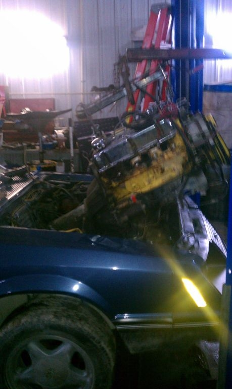 NOTa302 1983 Ford Mustang 15102666