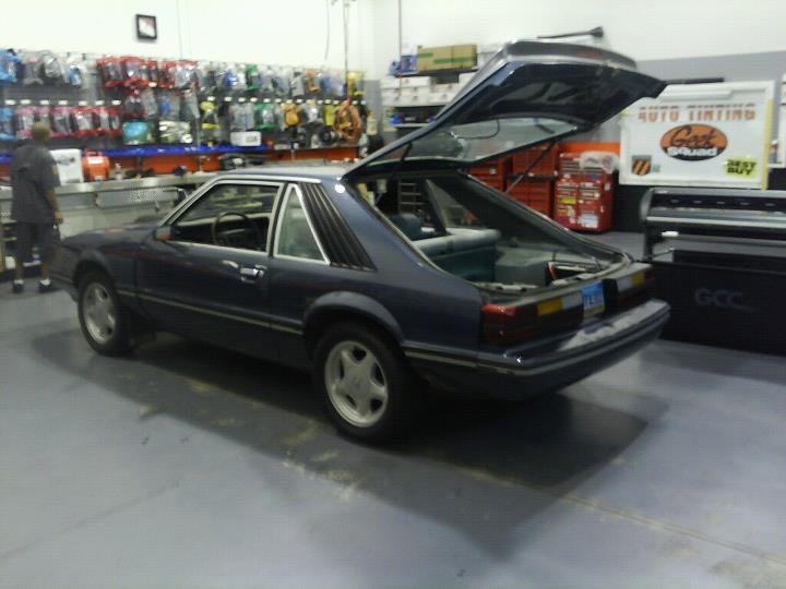 NOTa302 1983 Ford Mustang 15102690