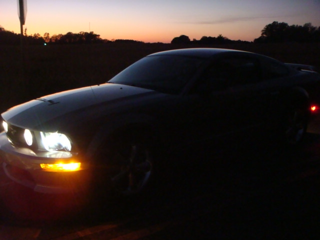 Another tferree34 2009 Ford Mustang post... - 15107968
