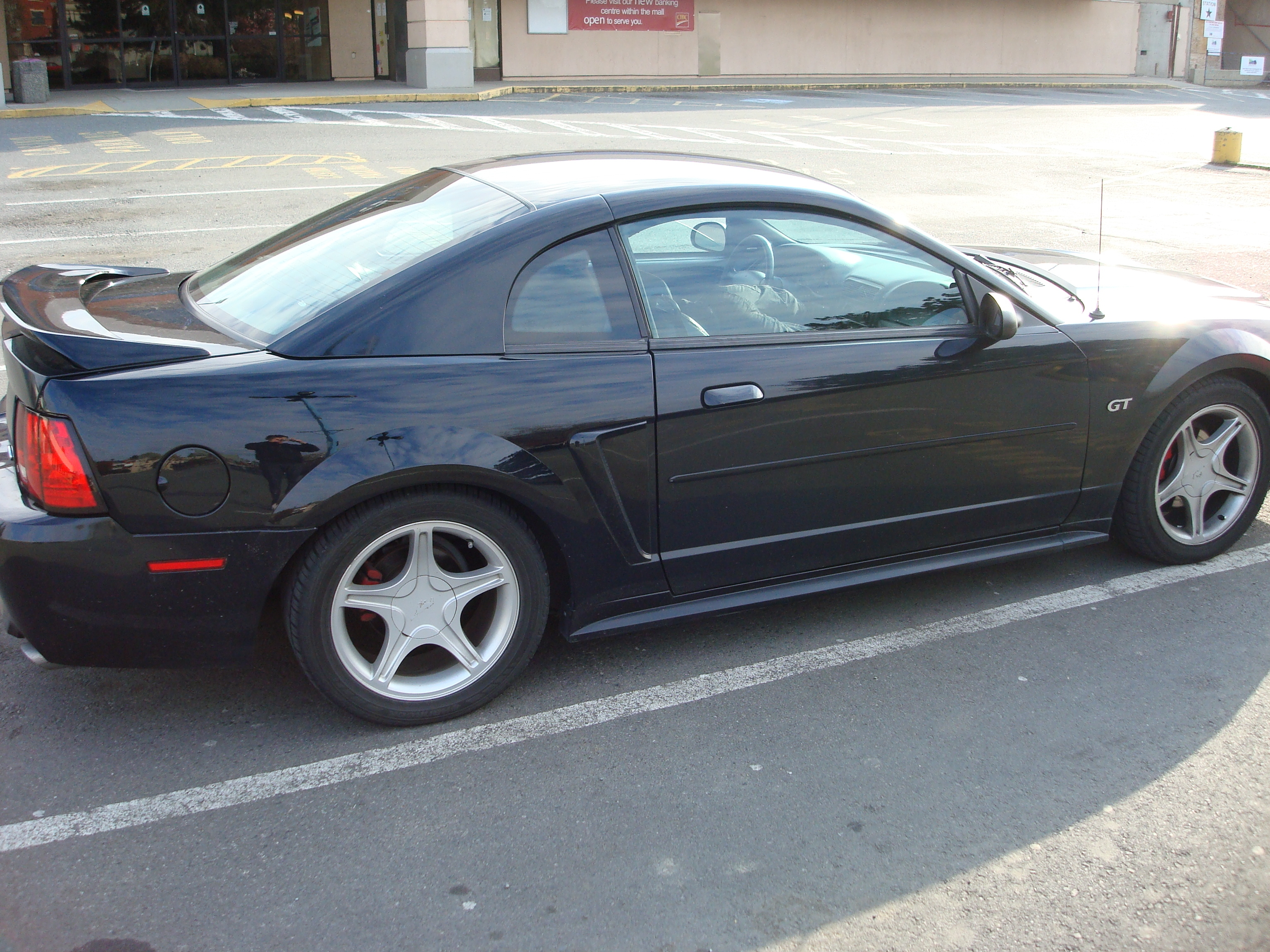 Another wasdwads 2000 Ford Mustang post... - 15120046