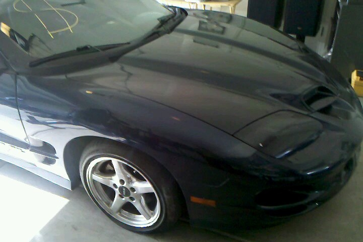 Another Jabo_SS 1999 Pontiac Trans Am post... - 15125531