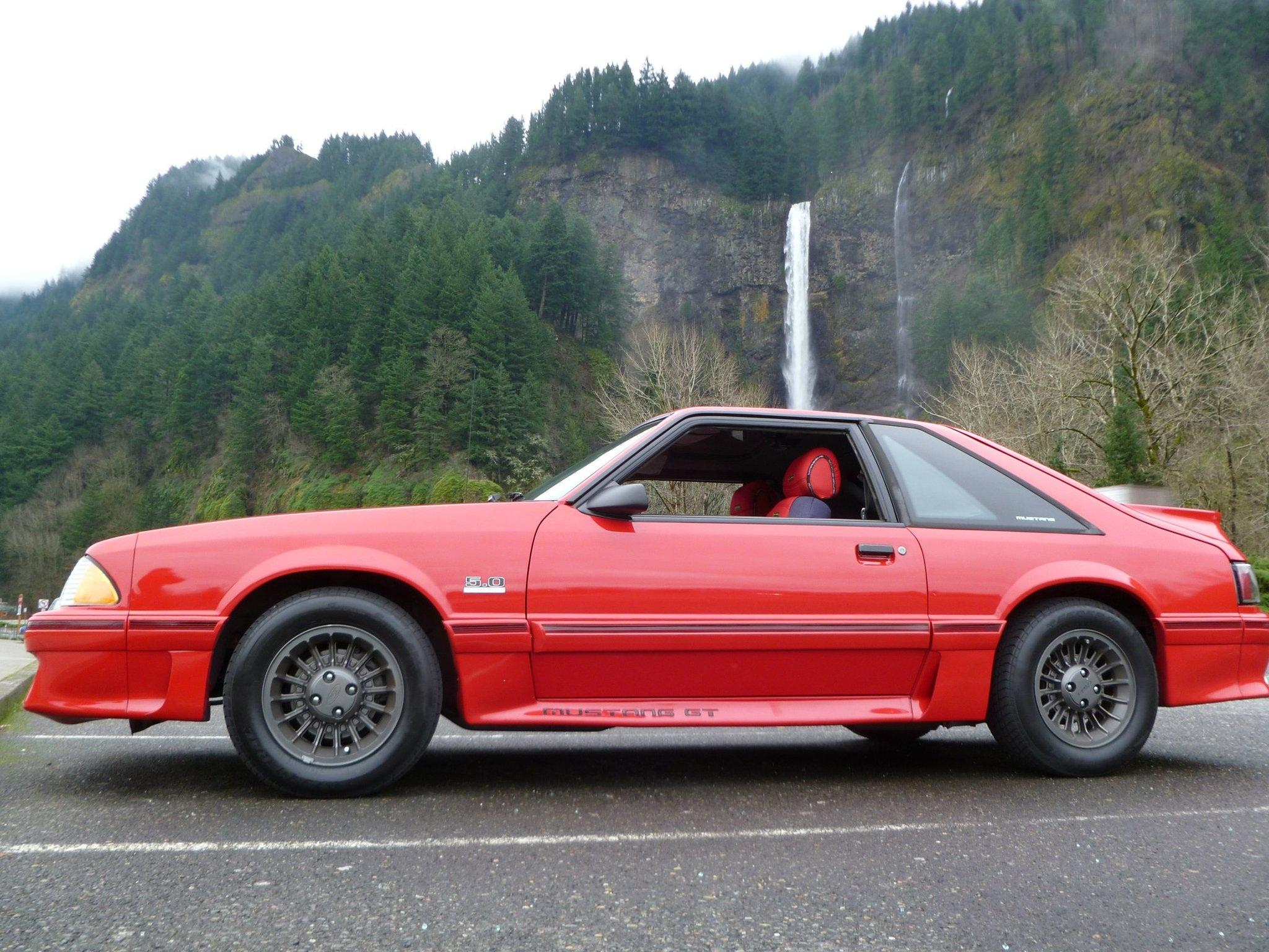 Another 66steve89 1989 Ford Mustang post... - 15131407