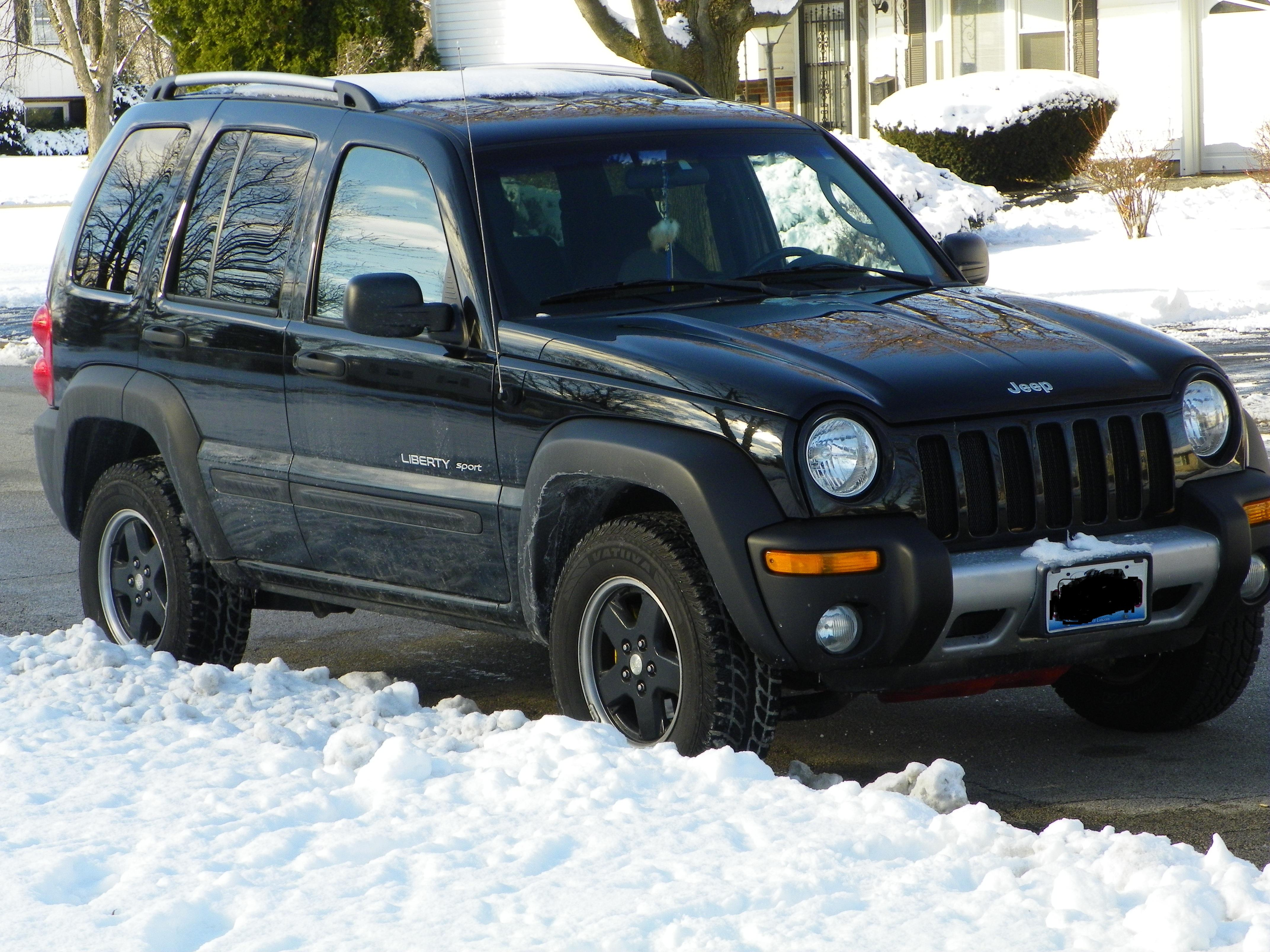 Another DR7 2002 Jeep Liberty post... - 15132005