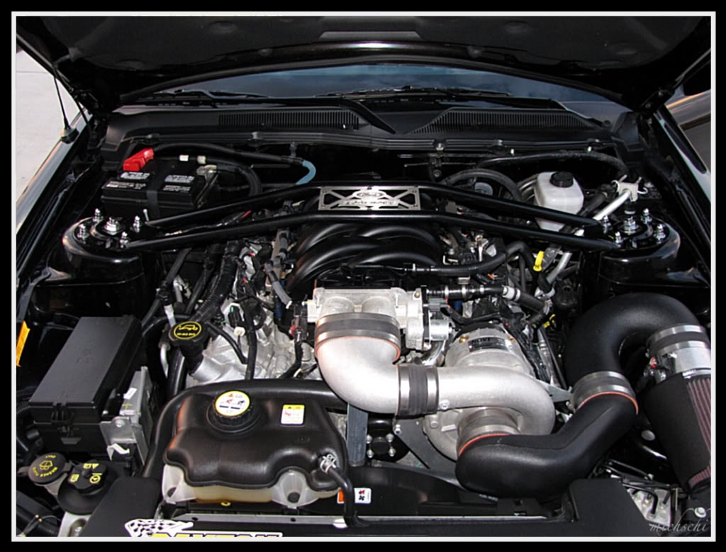 Another RZNCAIN 2007 Ford Mustang post... - 15158242