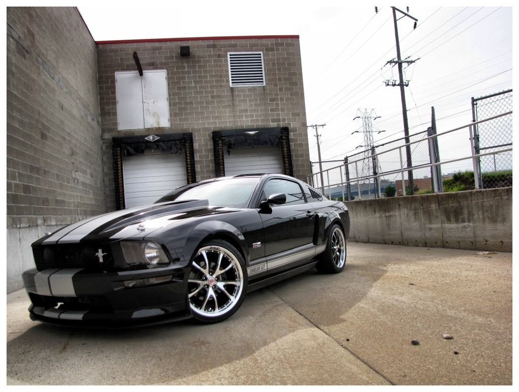 Another RZNCAIN 2007 Ford Mustang post... - 15158252