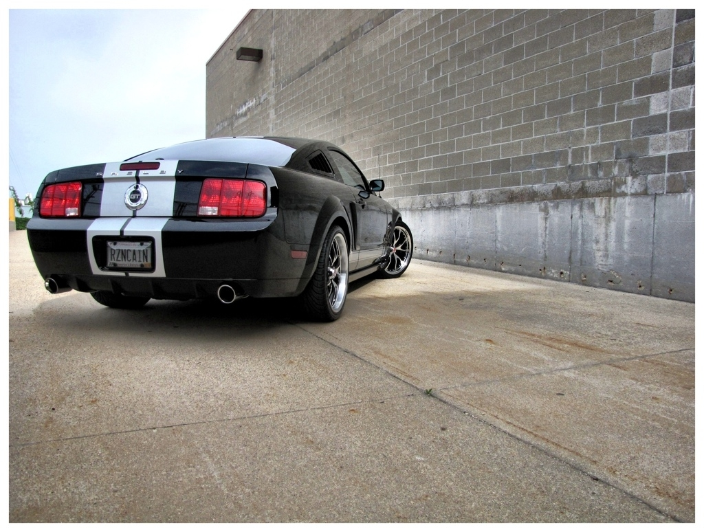 Another RZNCAIN 2007 Ford Mustang post... - 15158254