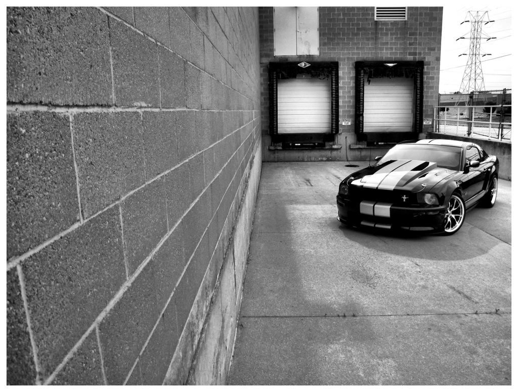 Another RZNCAIN 2007 Ford Mustang post... - 15158256