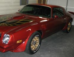 levaunts 1976 Pontiac Trans Am