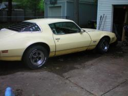 pittsburghfan87 1980 Pontiac Firebird