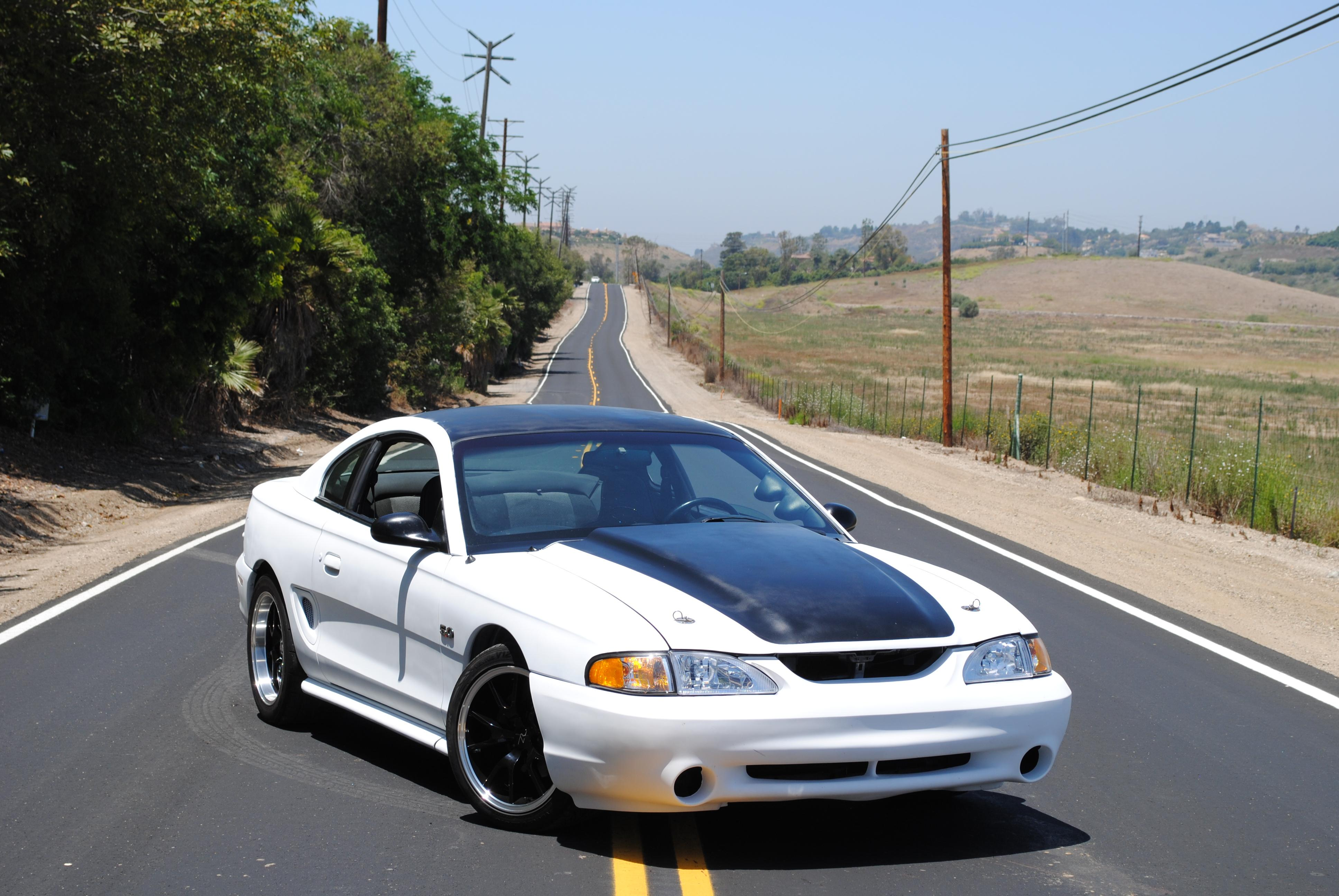 Another HalfSnake 1995 Ford Mustang post... - 15183415