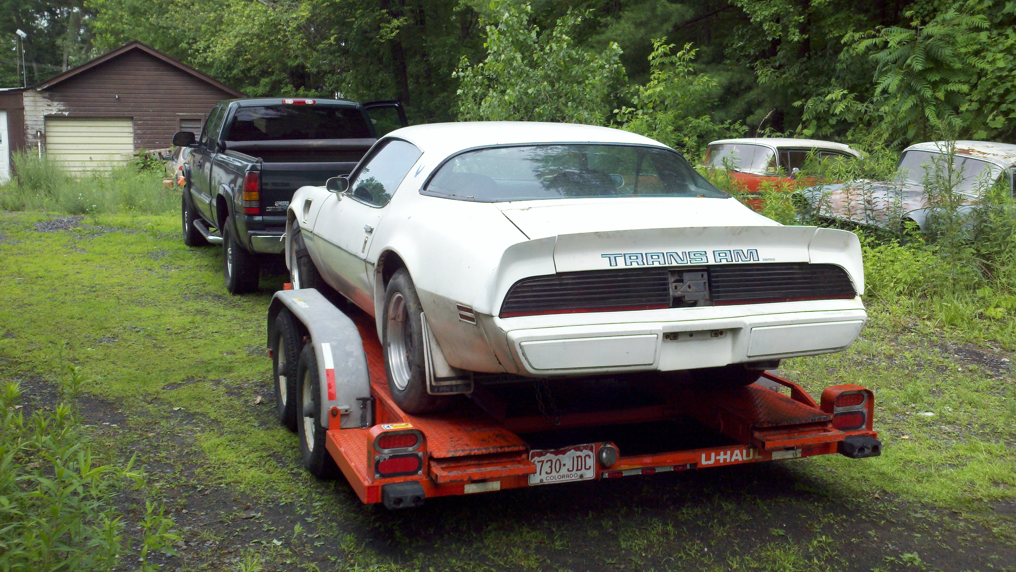 Another TransAmNut619 1979 Pontiac Trans Am post... - 15192261