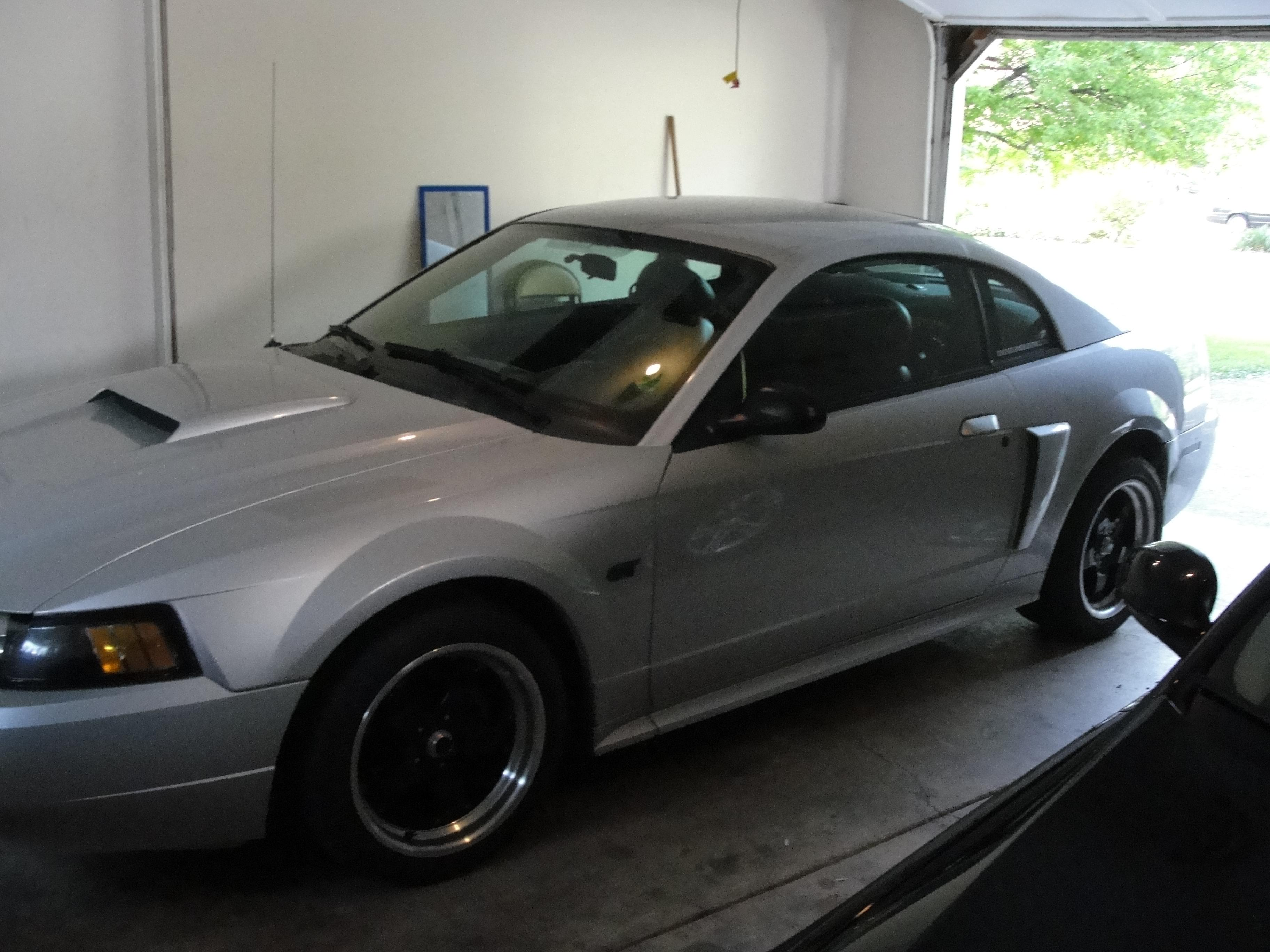 steelcondor 2003 ford mustanggt deluxe coupe 2d specs photos modification info at cardomain. Black Bedroom Furniture Sets. Home Design Ideas