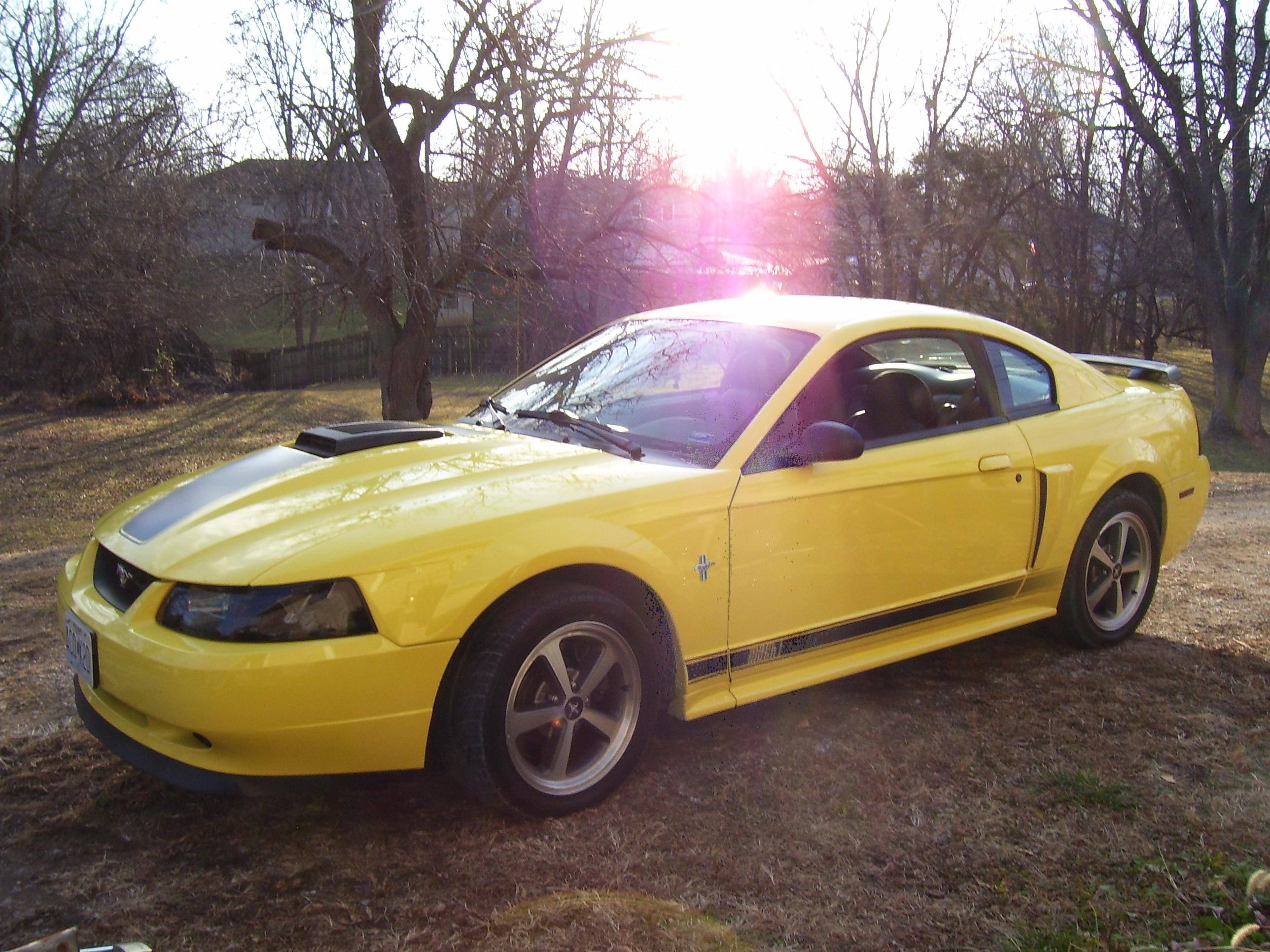 2003 ford mustang mach 1 weight. Black Bedroom Furniture Sets. Home Design Ideas