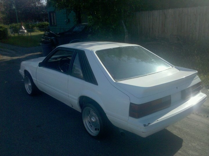 Another odawg406 1985 Ford Mustang post... - 17695831