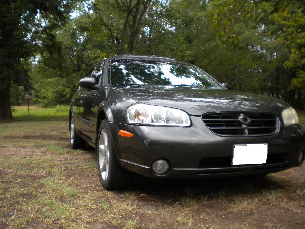 Another Hondsiacrazy 2000 Nissan Maxima post... - 15219314
