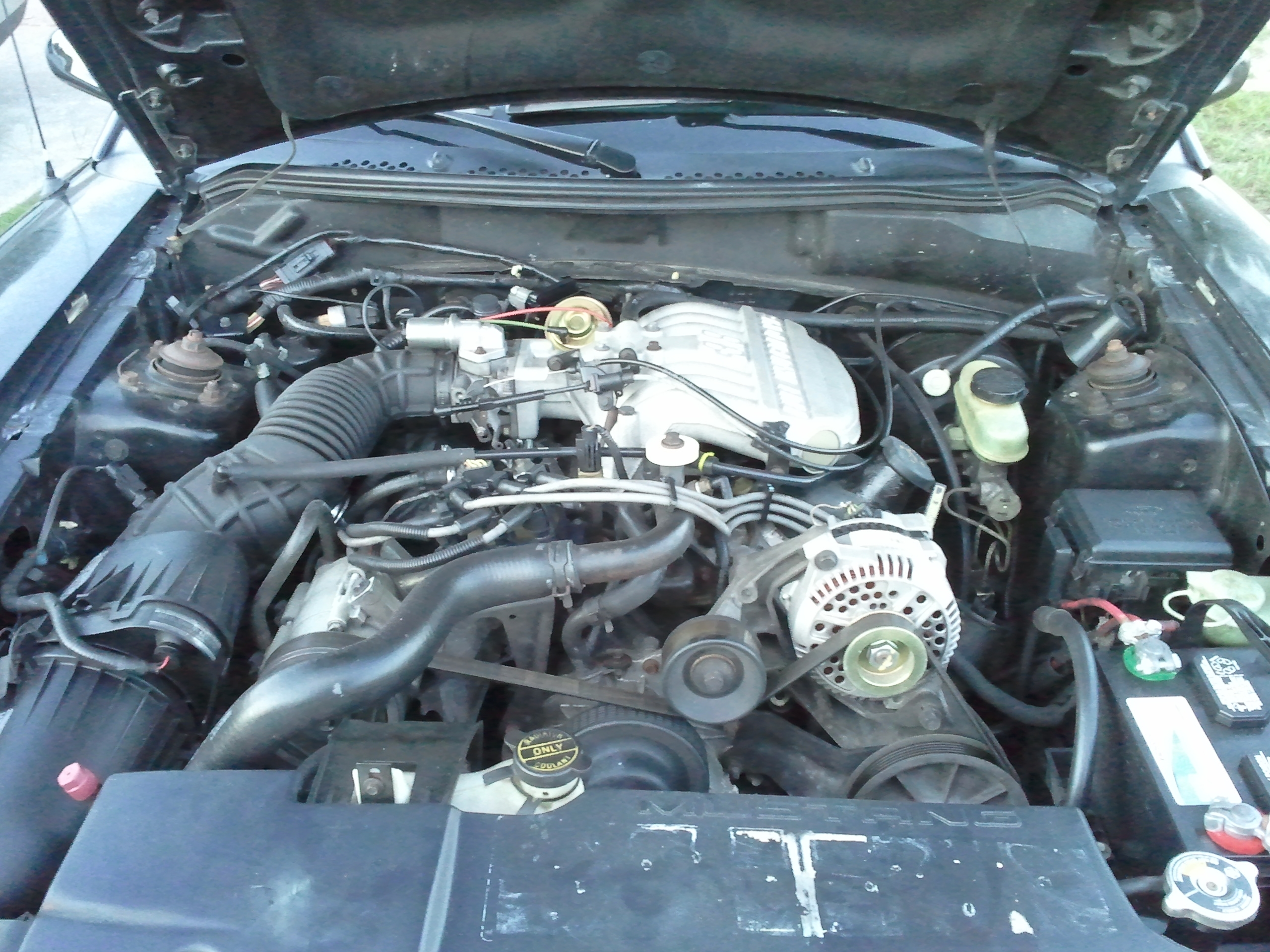 Another blackfox898 1995 Ford Mustang post... - 15218187