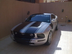 sportevo2513s 2007 Ford Mustang 