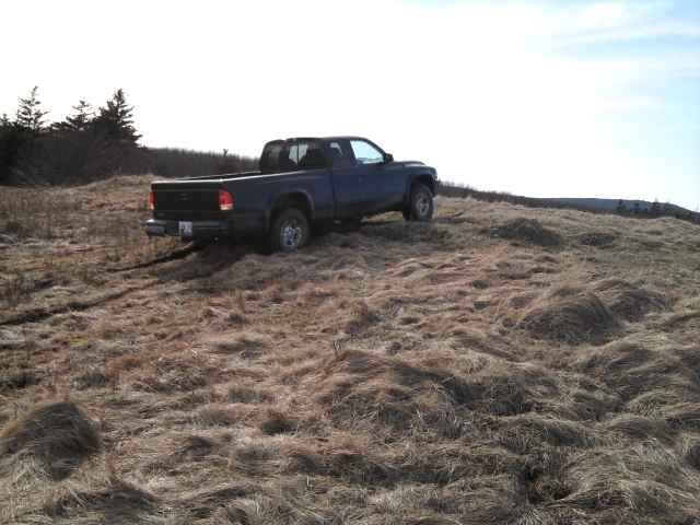 Another 350_wheelmaster 1997 Dodge Dakota Extended Cab post... - 15227213