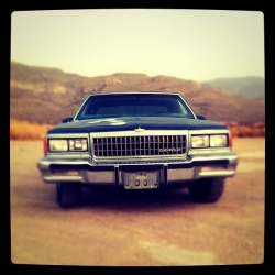 sneak_this 1979 Chevrolet Caprice Classic