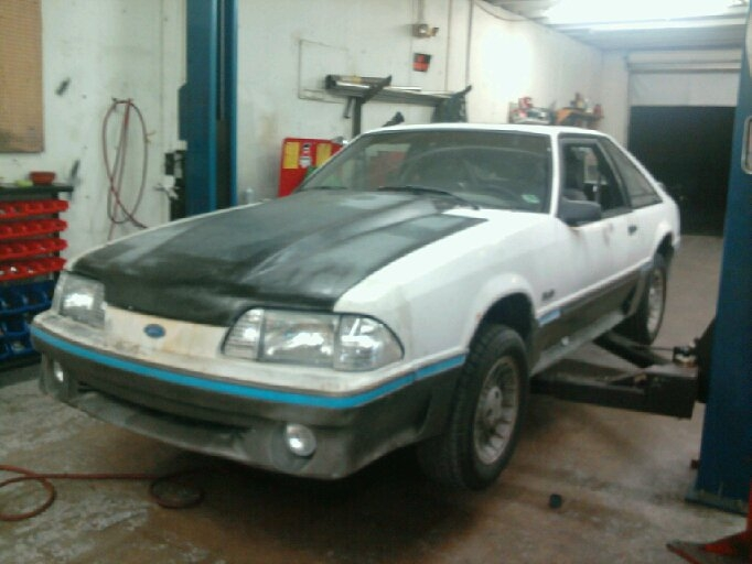 Another rsport711 1988 Ford Mustang post... - 15240210