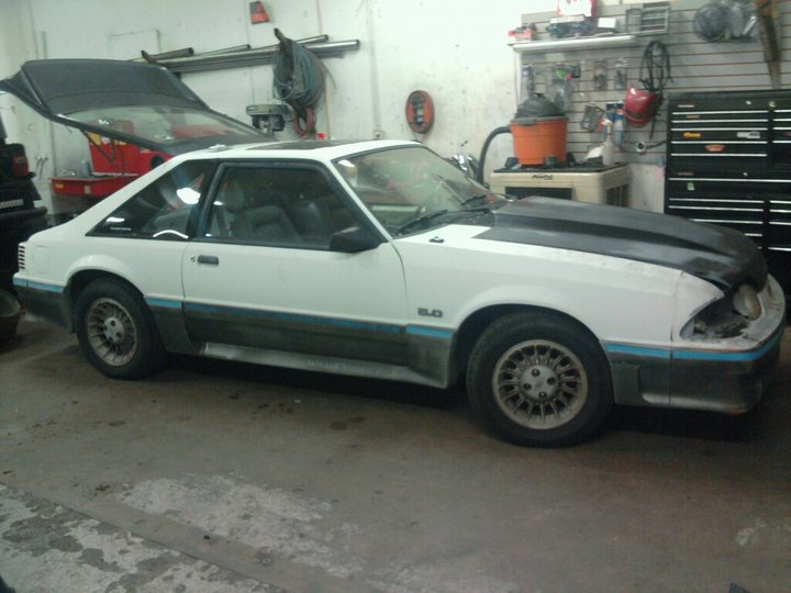 Another rsport711 1988 Ford Mustang post... - 15240218