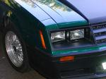 mustangmarty 1979 Ford Mustang