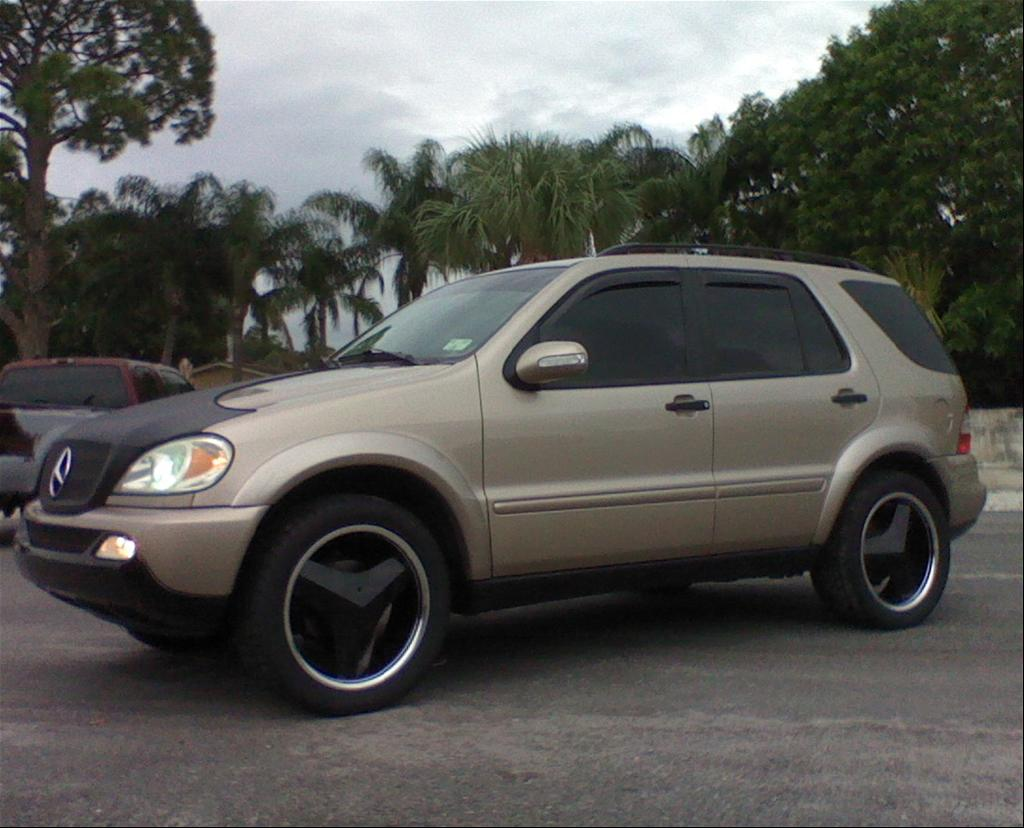 Another ftldiver 2002 Mercedes-Benz ML-Class post... - 15257339