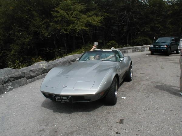 Another indianasub 1978 Chevrolet Corvette post... - 15262993