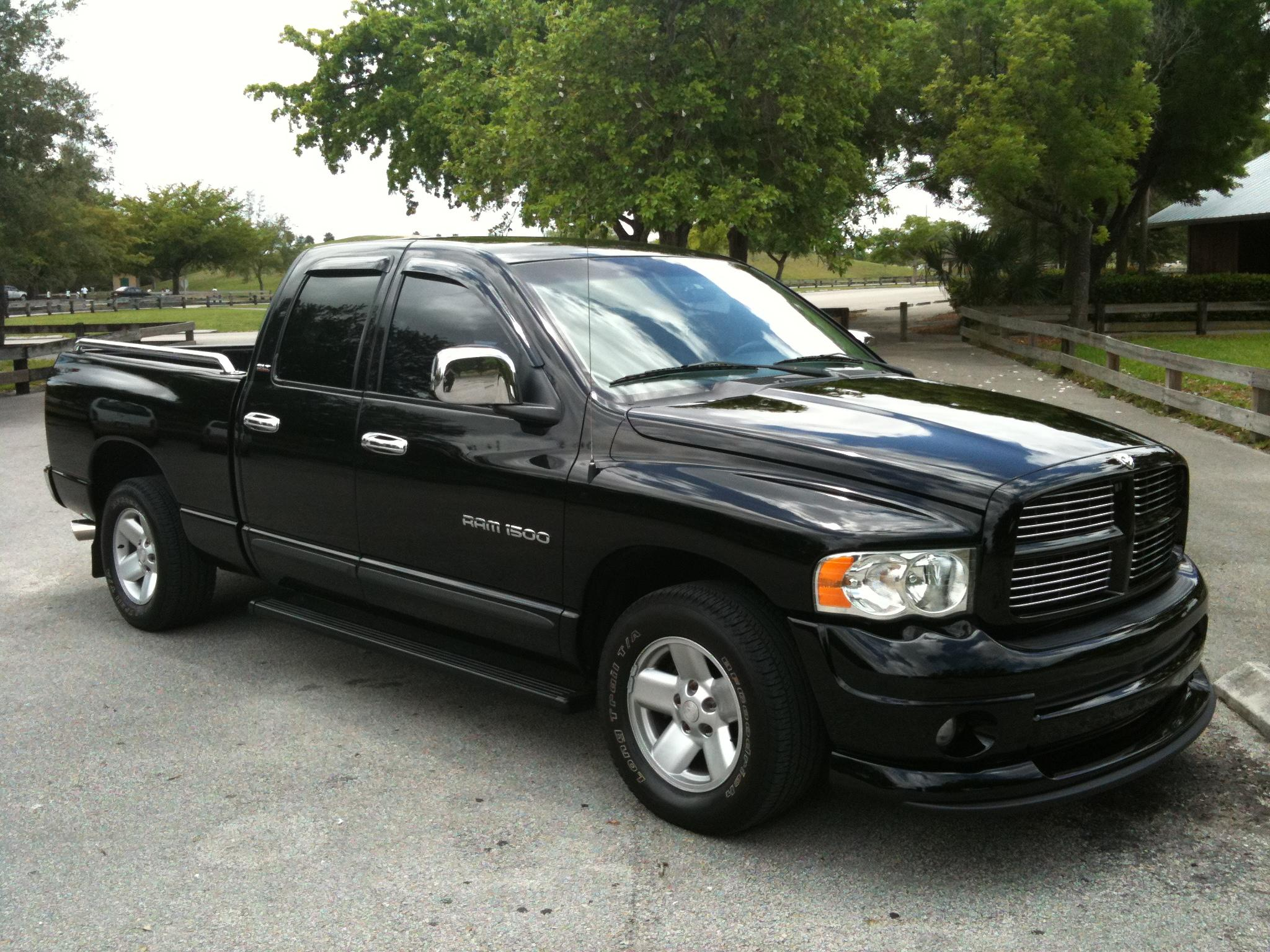 superiorstyles 2002 dodge ram 1500 quad cabshort bed specs photos modification info at cardomain. Black Bedroom Furniture Sets. Home Design Ideas