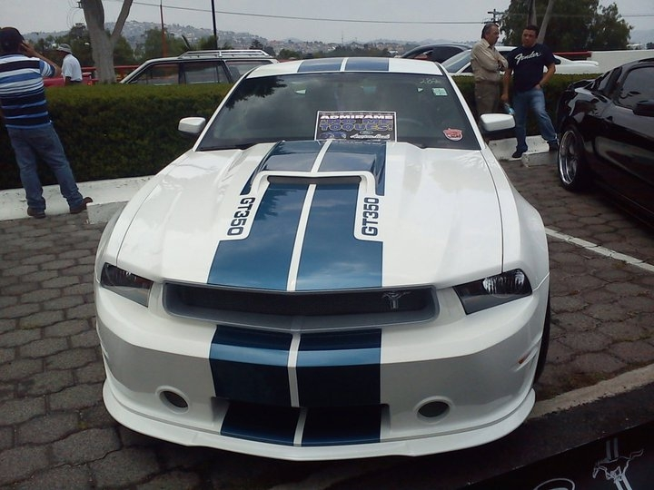Another SINALOASTANG 2011 Shelby GT350 post... - 15310065