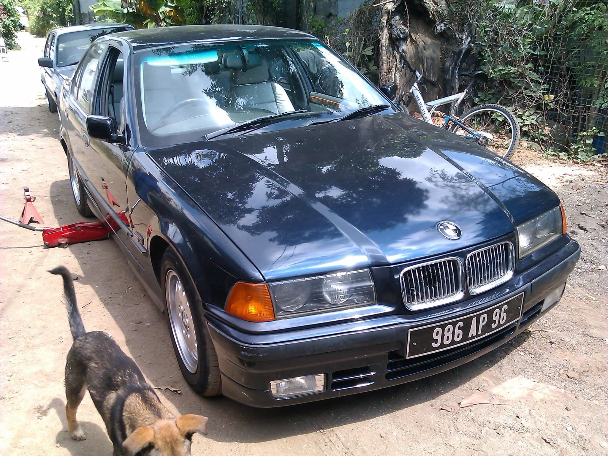 Another Reekesh 1996 BMW 3 Series post... - 15347871