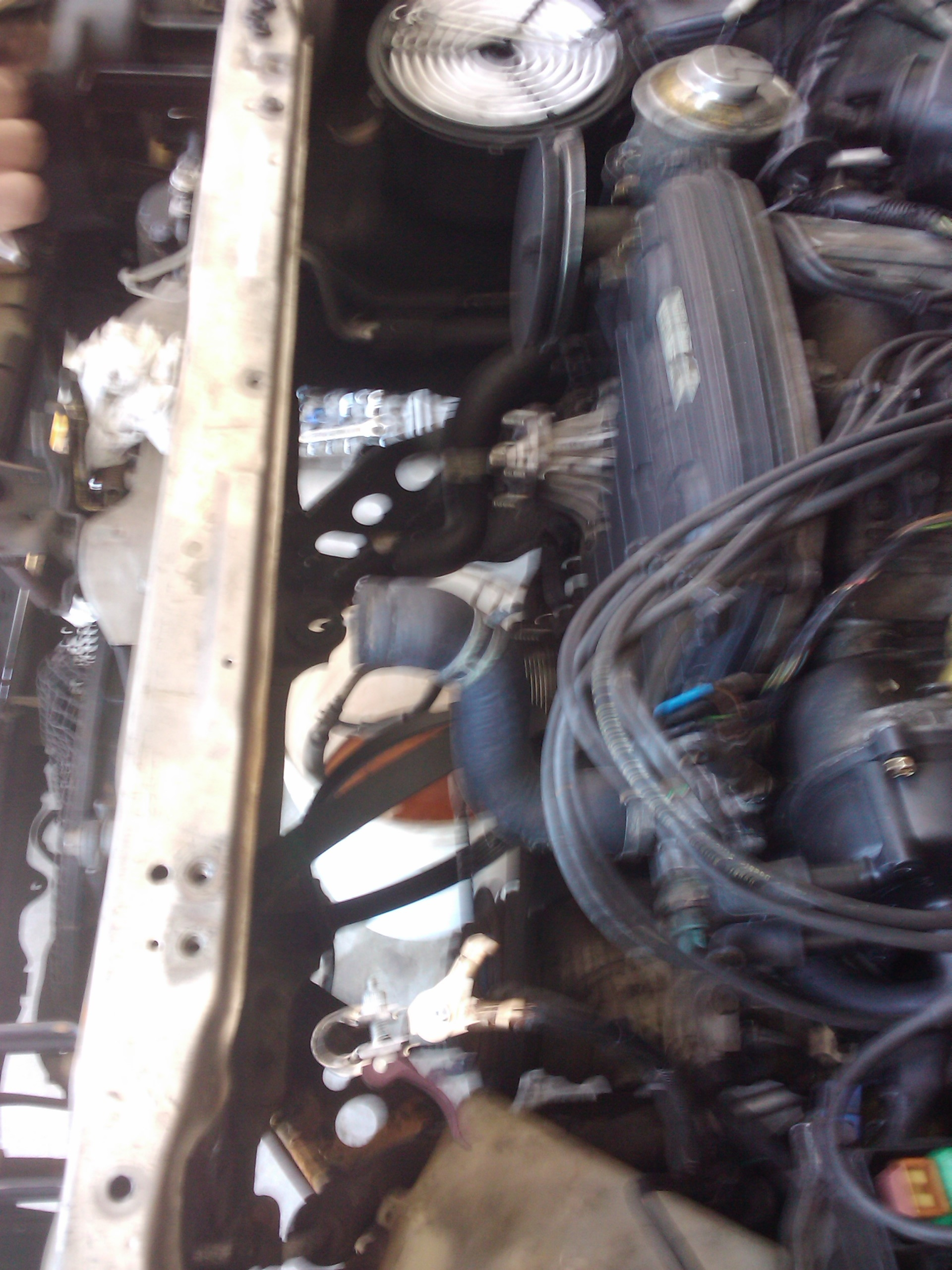 Another therealfaze 1987 Toyota Cressida post... - 15388565