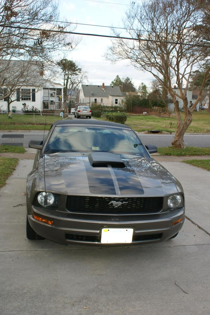 Another Navybass65 2005 Ford Mustang post... - 15493401