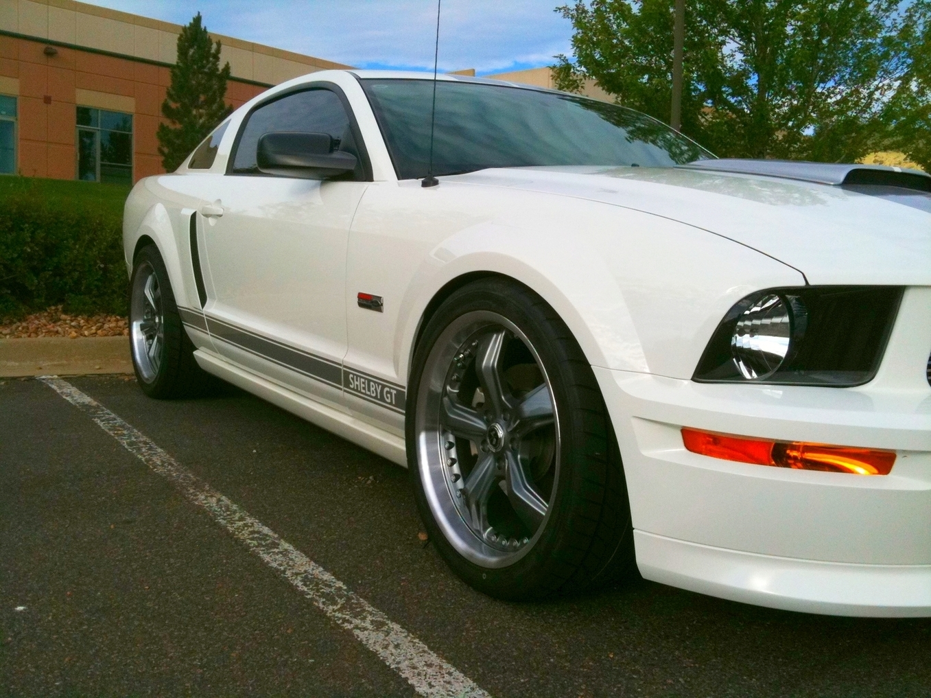 Another 6606stang 2007 Ford Mustang post... - 14193951