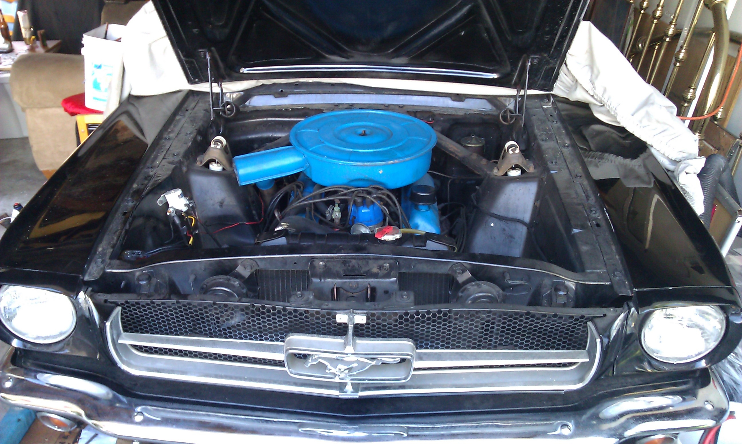 Another heath94 1965 Ford Mustang post... - 15680822