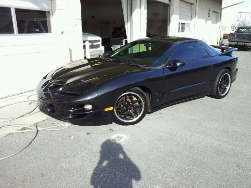 Another ZombieSoldier 2001 Pontiac Trans Am post... - 15779856