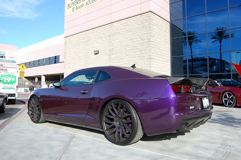 Purple Camaro 2014 Purple giovanna camaro -